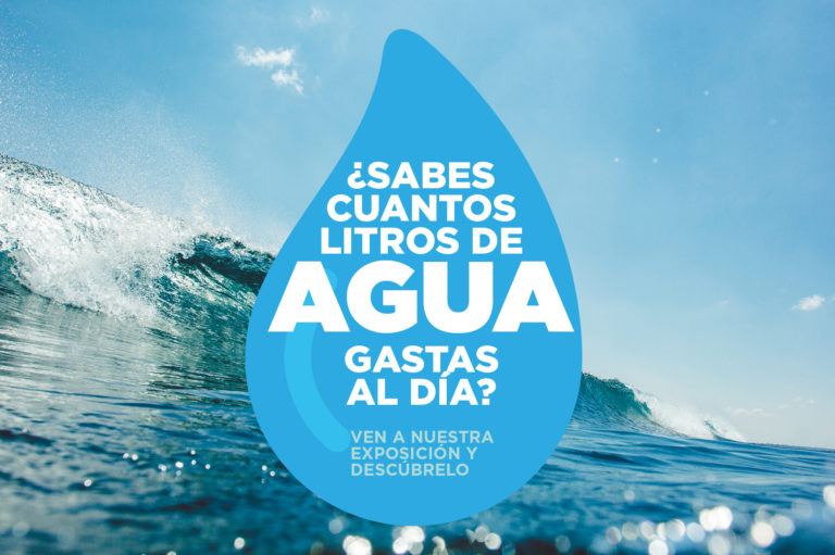 El paseo_dia agua_cabecera web 3 2