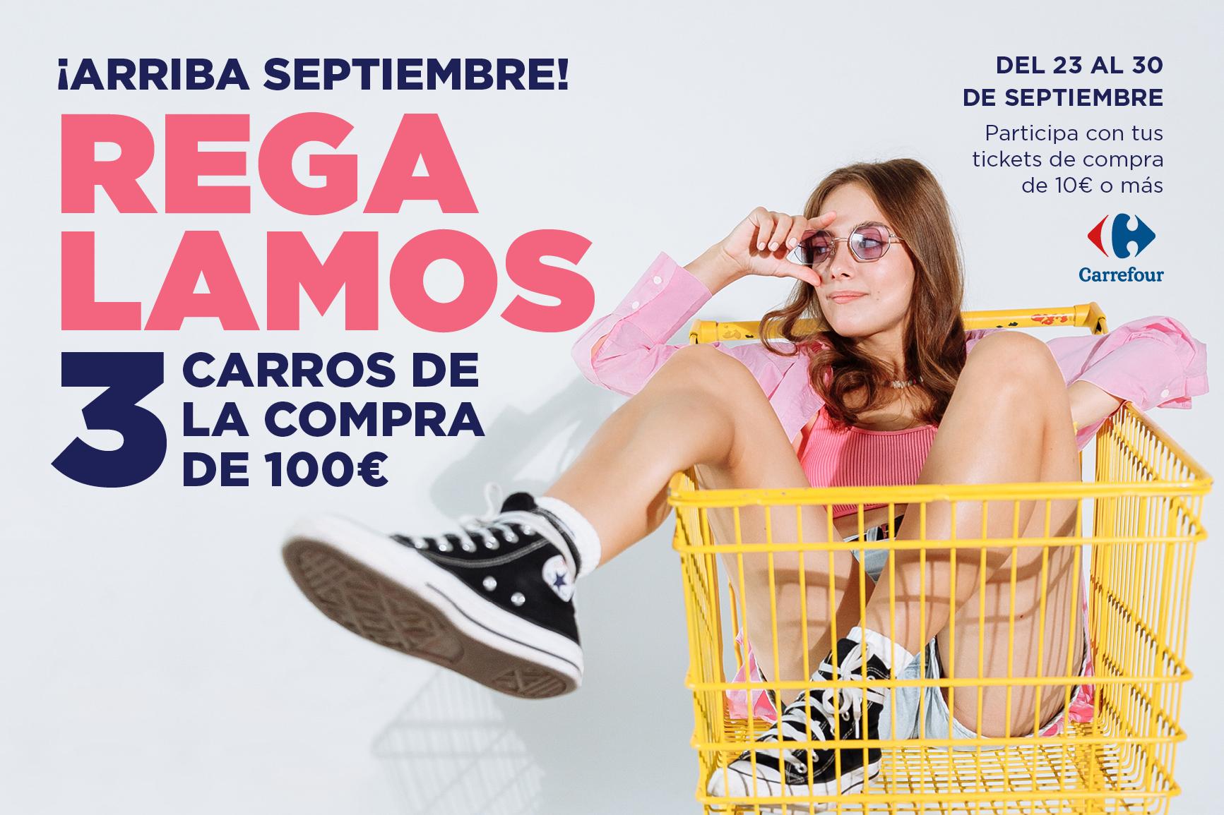 Gran sur_carro compra octubre_cabecera web 3 2